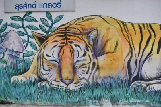 arte-urbano-chiang-mai4