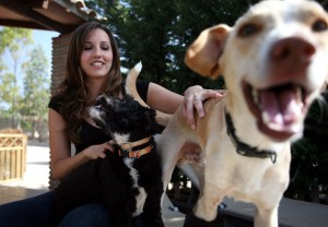 Elisabet con sus perros y Canelo que es el perro que tiene en acogida
