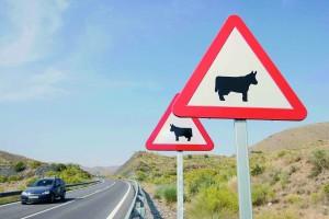 (Al 04).-Imagen de la doble señalizacion en la carretera que une tab