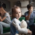 Edukace rodičů v rozvodové situaci formou on-line vzdělávání