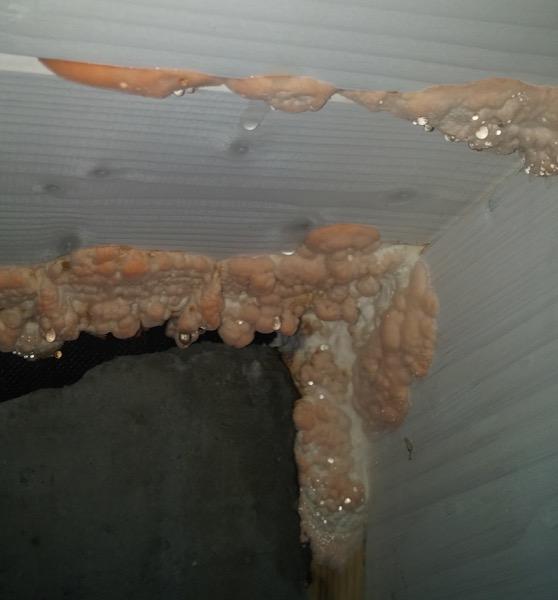 isolamento tetto in legno - Tetto coibentato non ventilato in legno con guaina ardesiata 22