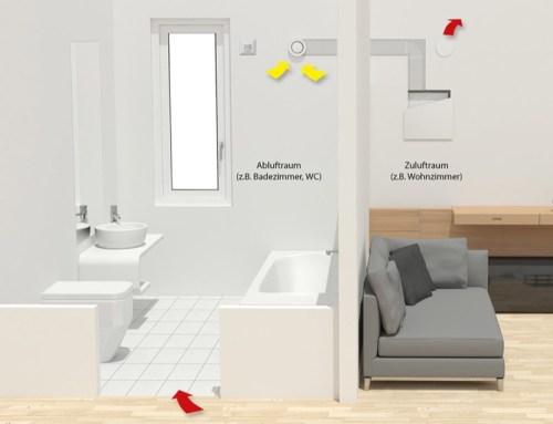 comprendere la muffa - Eliminare la muffa in casa senza isolamento e senza VMC 20