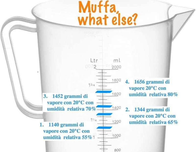 comprendere la muffa - Eliminare la muffa in casa senza isolamento e senza VMC 5
