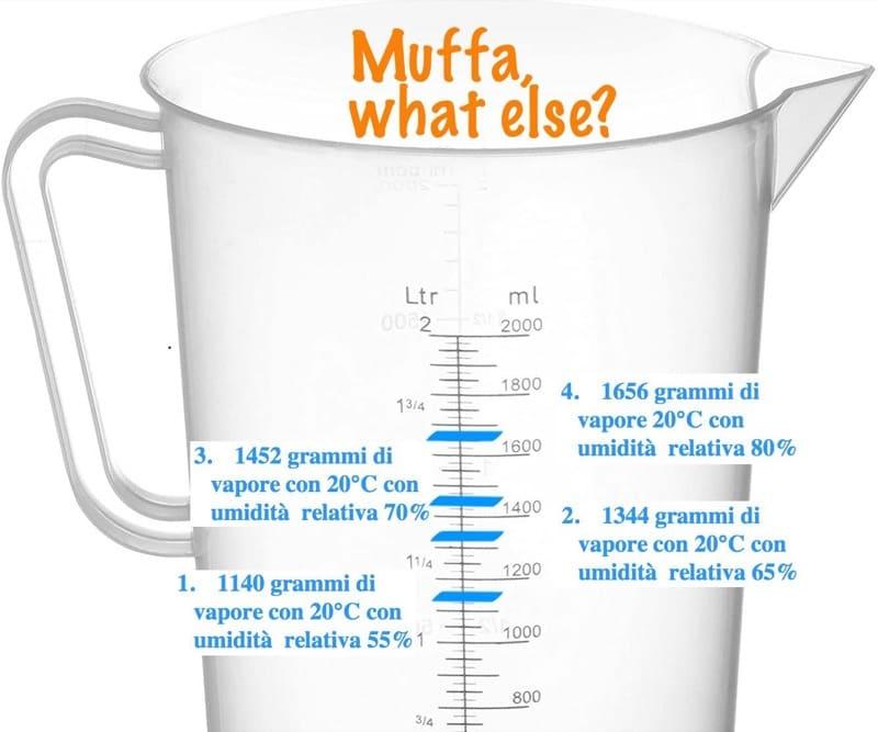 comprendere la muffa - Eliminare la muffa in casa senza isolamento e senza VMC 18