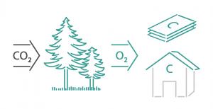 isolamento tetto in legno - Sul tetto 30cm di lana di roccia si comportano come 20cm di fibra di legno 10