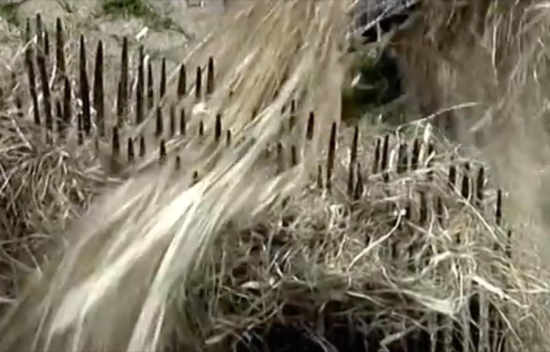 nozioni materiali naturali - Fibra di legno o fibra di canapa, è questo il dilemma 44
