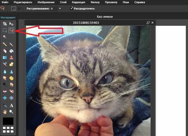 Как в фотошопе обрезать по кругу – Как обрезать рисунок в ...