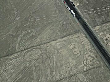Linee di Nazca, Lucertola, Perù