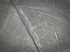 Linee di Nazca, Ragno, Perù