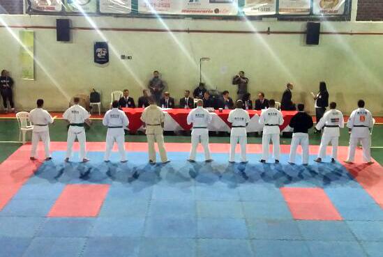 karate artur nogueira12