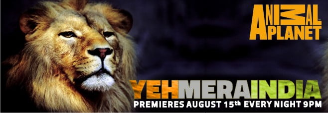 Yeh Mera India Animal Planet initiative 67th India's Independence