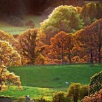 Couleurs d'automne en Ecosse