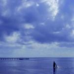 Baigneurs dans la mer