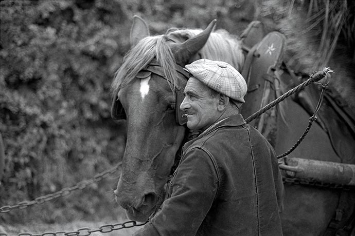 La passion des chevaux, © Photo Pierre Boitrel
