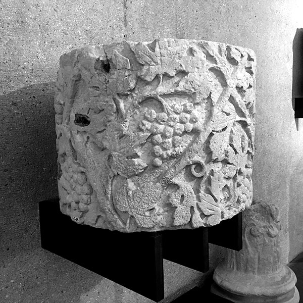 musee-vesuna-vestiges-gallo-romain-vigne