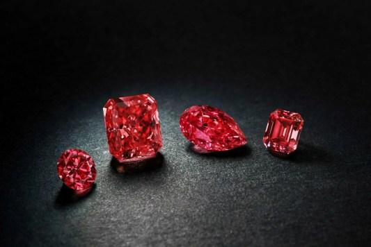"""4 Diamants Fancy Rouge Dont """"Argyle Cardinale"""" 1,21 ct, Taille Radian Production 2014 Crédit Mine d'Argyle"""