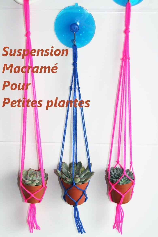 suspension macramé pour mini succulentes