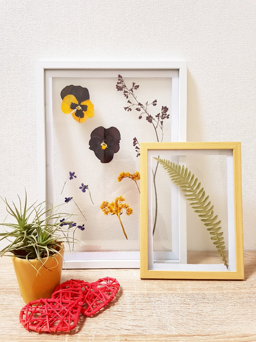 DIY Tuto cadre herbier sous verres transparent