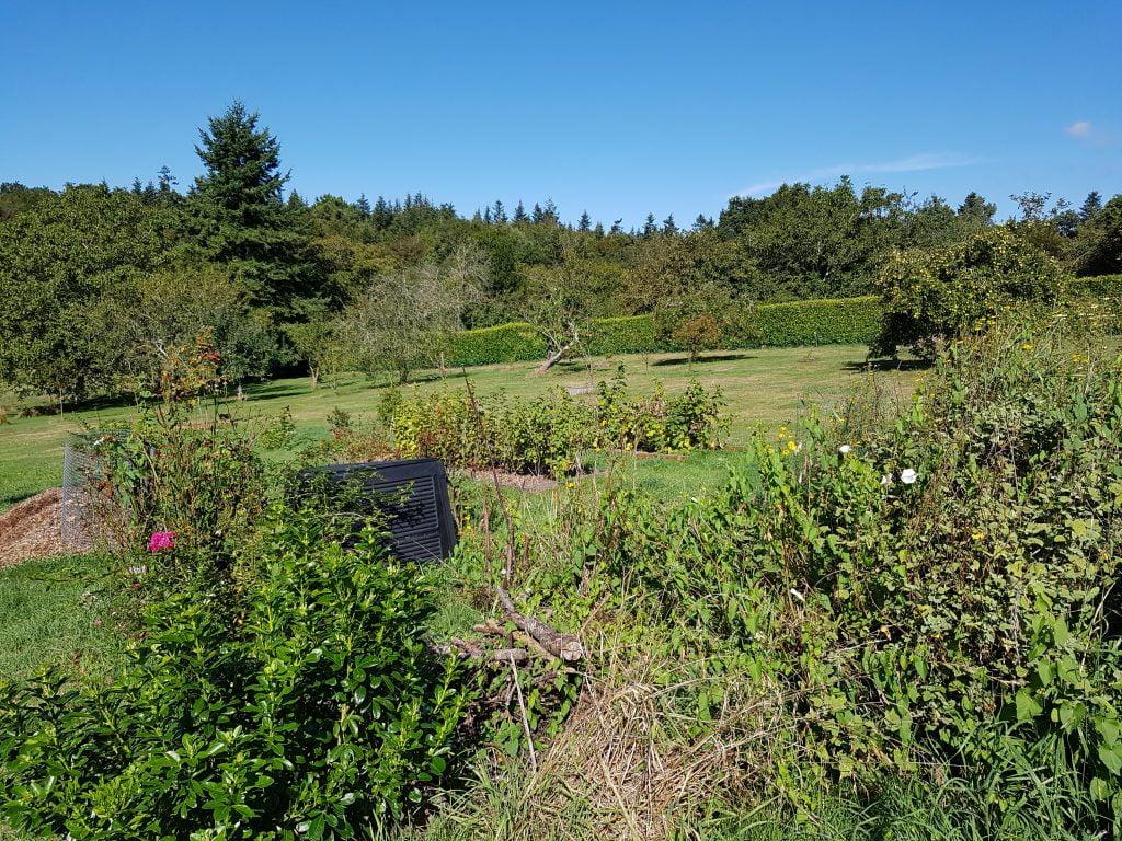 Vue du jardin en septembre