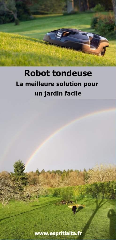 Robot tondeuse - la meilleure solution pour un jardin facile et sans travail