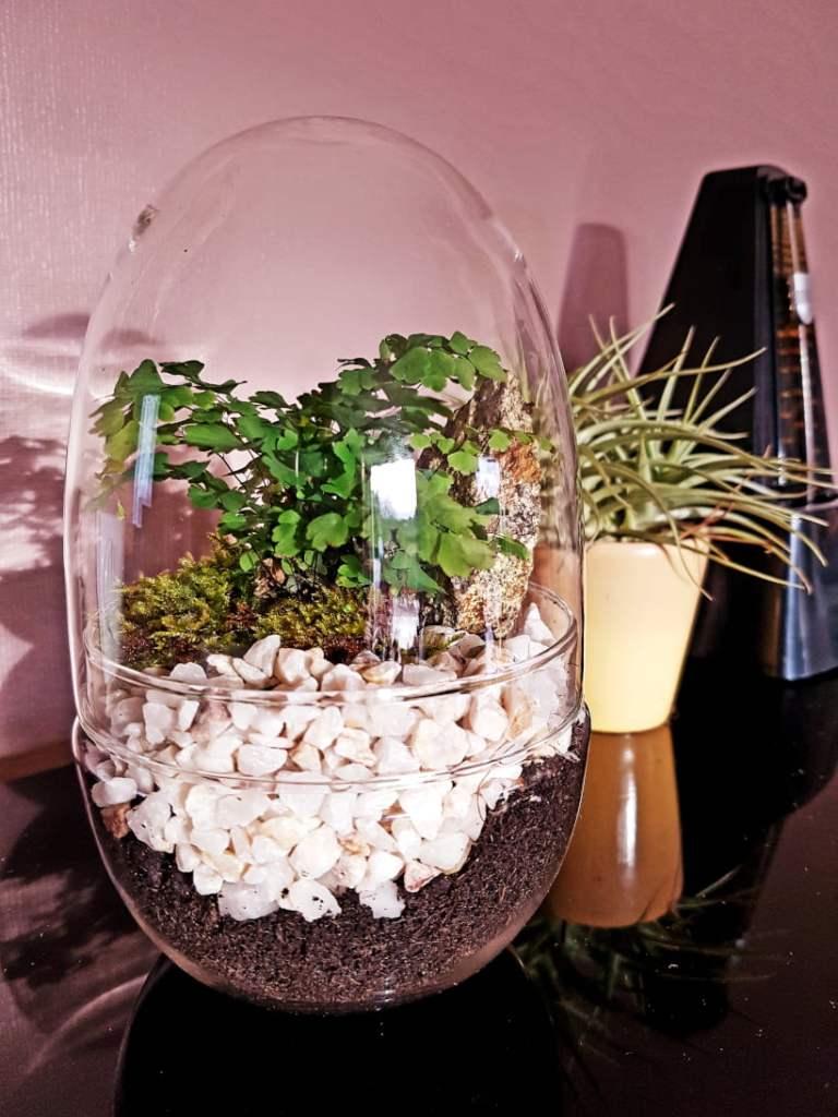 terrarium œuf DIY facile - fait maison