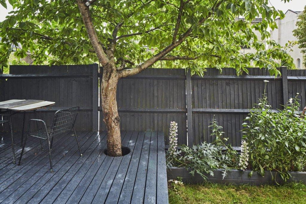 Appart cosy aux murs verts