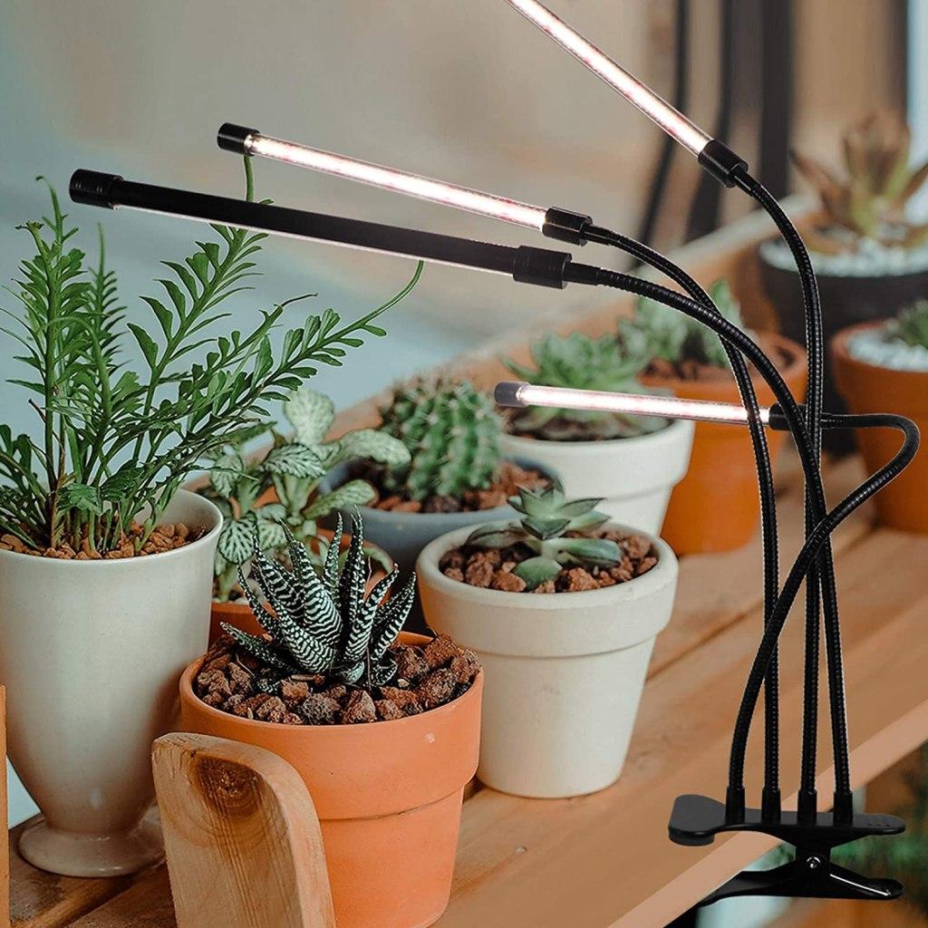 lampe de croissance LED