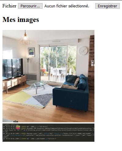 Affichage des images en HTML