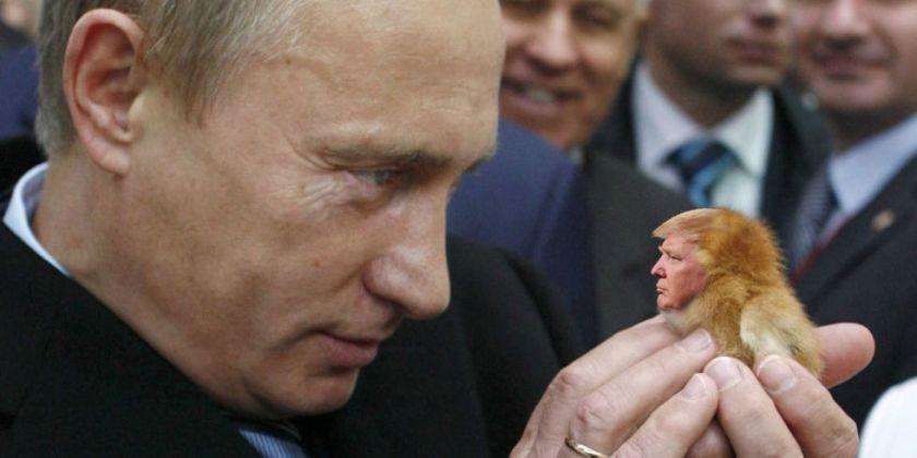 Image result for putin trump