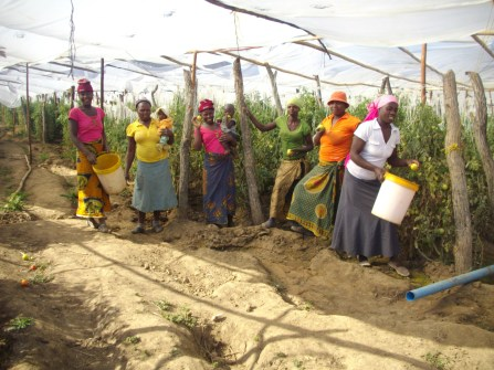 Ruchanyu wives pose in garden
