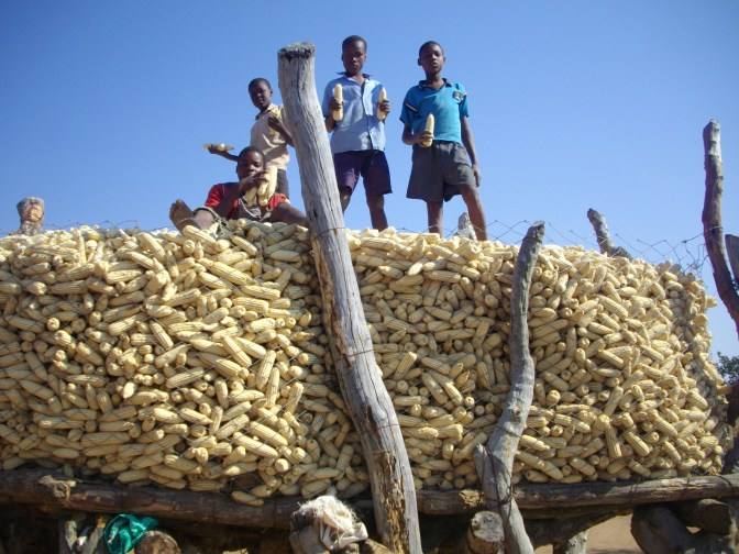 Rwafa boys show off 2012 yield