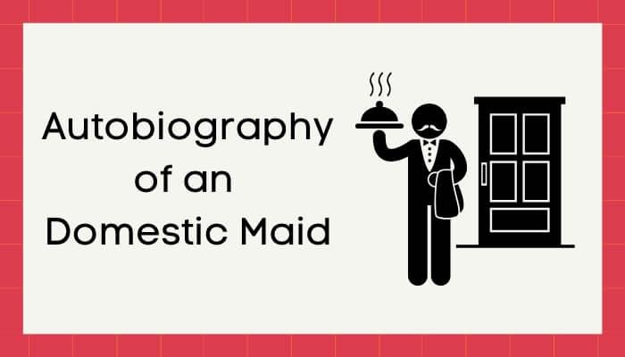 एक बूढ़े नौकर की आत्मकथा हिंदी निबंध - Autobiography of Old Servant Essay in Hindi
