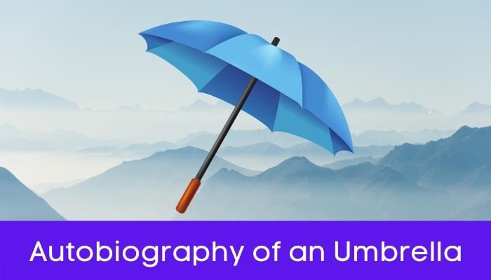 एक छाते की आत्मकथा हिंदी निबंध - Autobiography of Umbrella Essay in Hindi