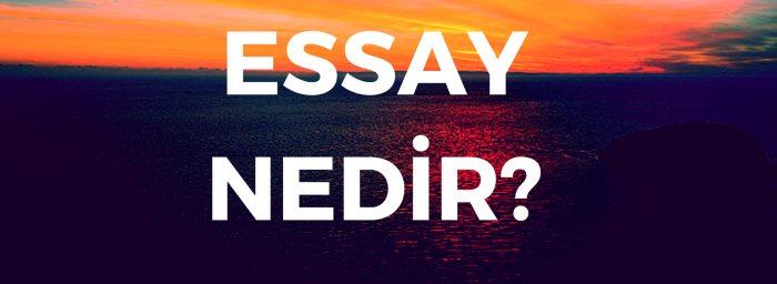 Extended essay ne demek