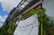 Unser Banner wird von der Inkagurke umrankt.