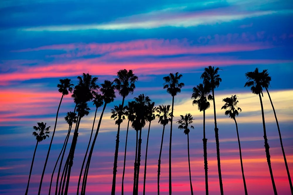 11 Things to Know About Living in Culver City via @extraspace