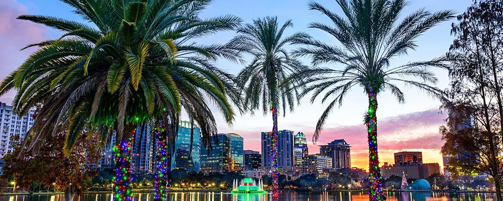 Palm trees and skyline in Orlando