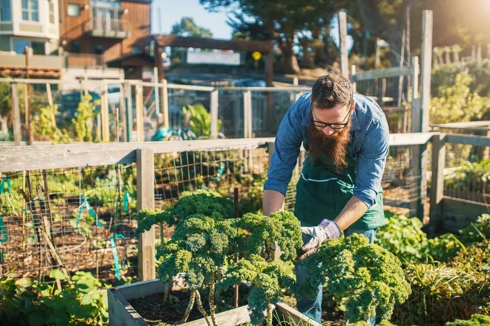 26 Easy DIY Ideas for Creating an Urban Garden | Extra Space
