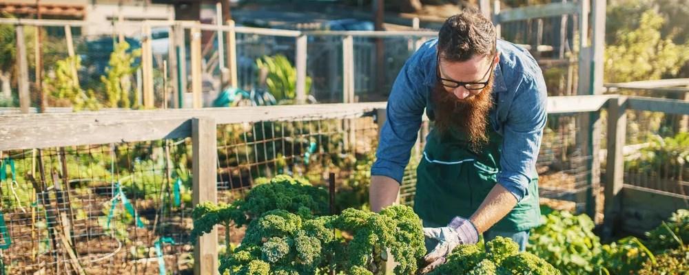 Young man working in urban garden