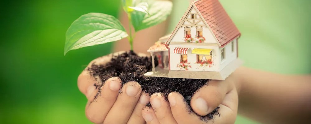 Child's hands holding house, dirt, and plant