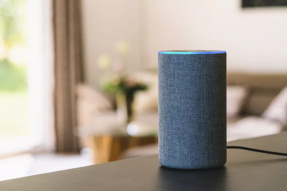 smart speaker sitting on a shelf in a living room
