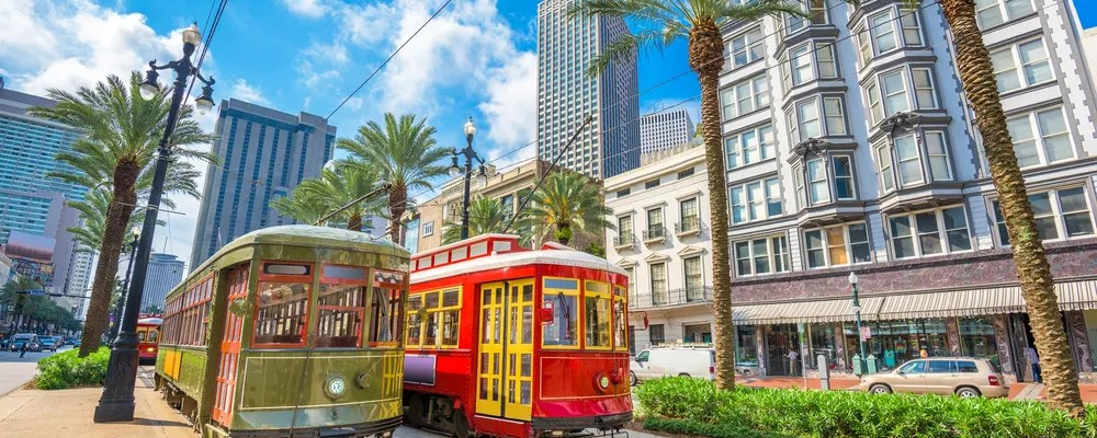 Trolleys and palm trees on a sunny day in New Orleans.