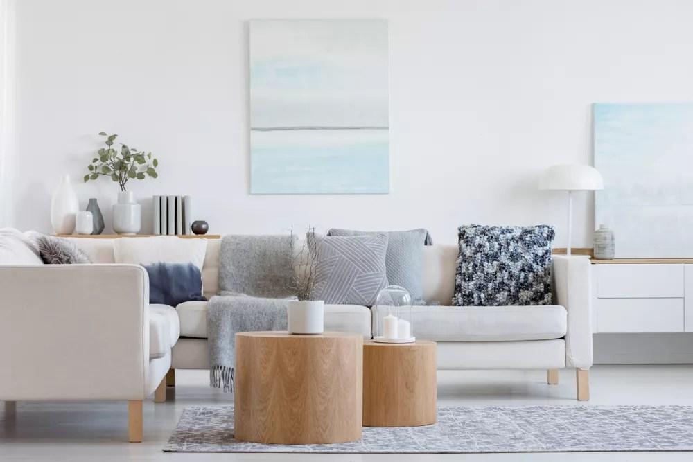 Minimalist, Organized Living Room