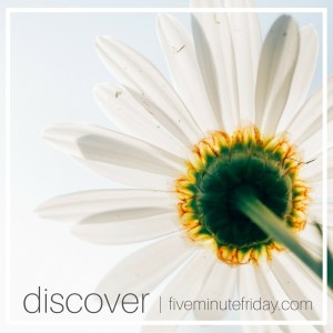 Discover God's Heart for the Lost [day 20: discover]