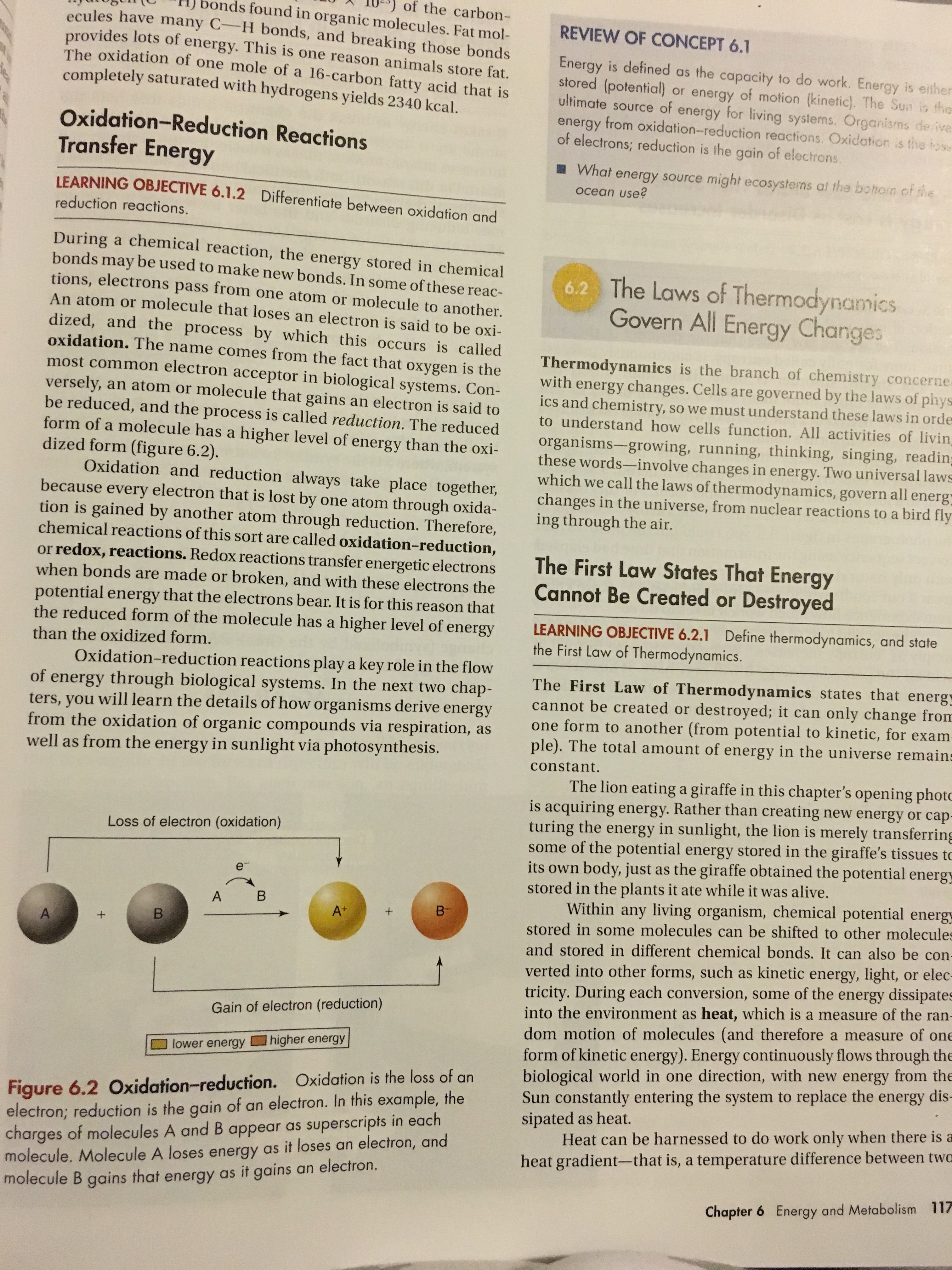 Thermodynamics Explained In A Biology Textbook Much