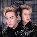 Choose Your Own Adventure: Jedward's 'Voice Of A Rebel' Has Been Worth Waiting For
