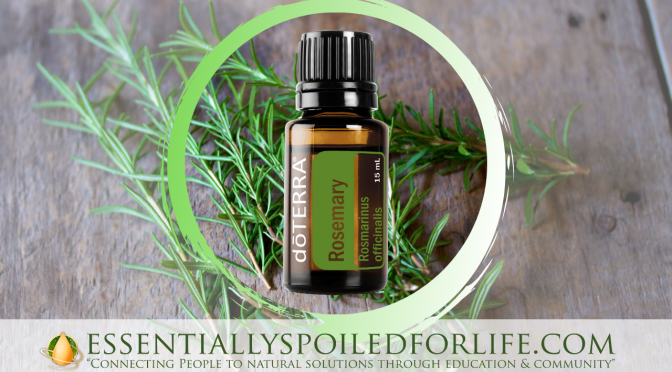 Hair Care DIY with Rosemary Essential Oil