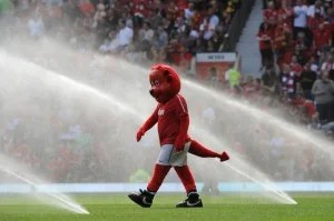 Manchester United mascot Fred the Red on the pitch before the match