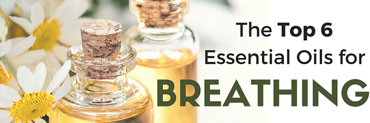 How to breathe again easily with the top essential oils for breathing and respiratory conditions.