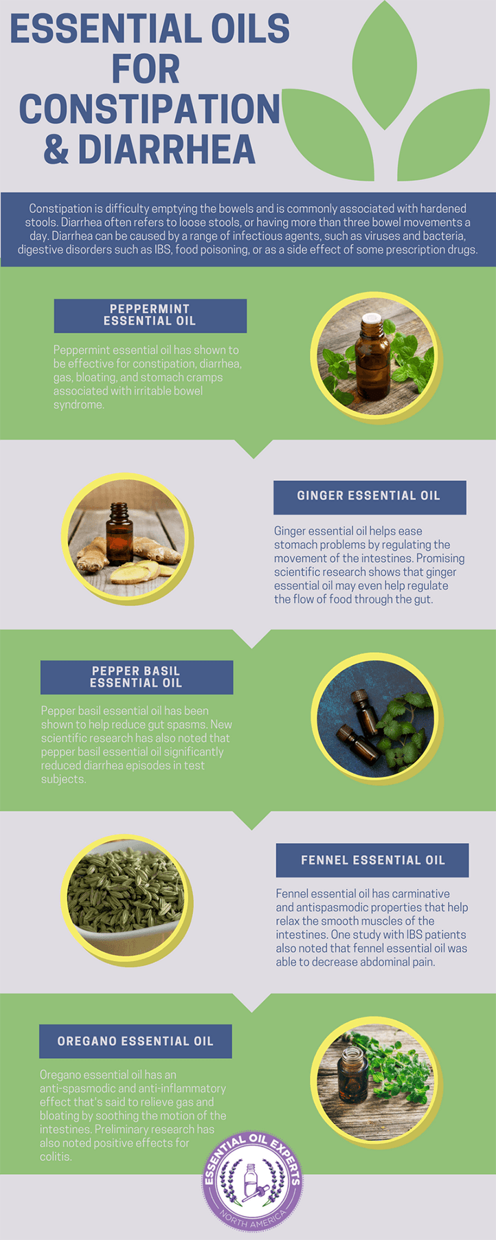 The most effective essential oils for diarrhea plus the top calming essential oils for stomach cramps.